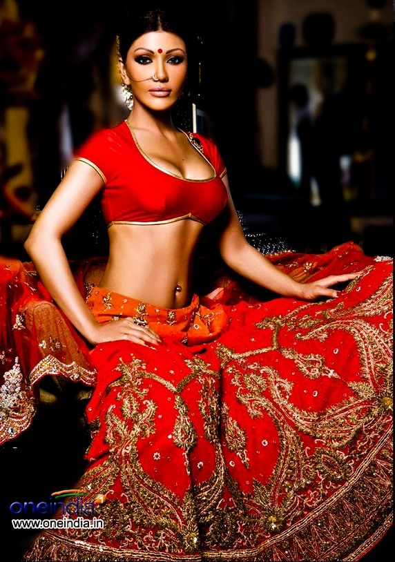 Erotic sari