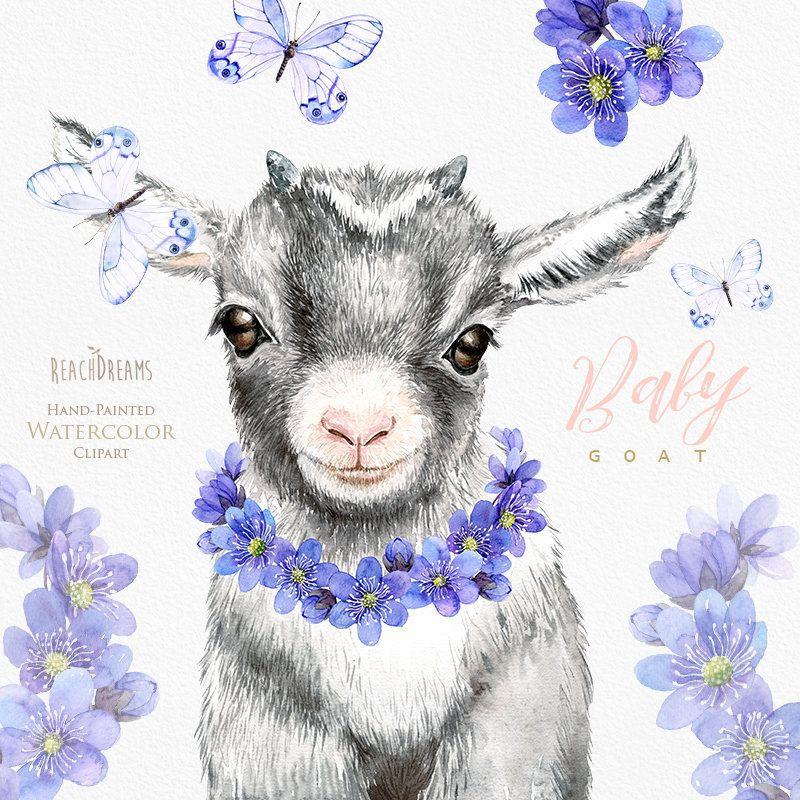 Baby Goat Watercolor Clipart Nursery Art Little Animals Etsy Baby Goats Animal Clipart Goat Art