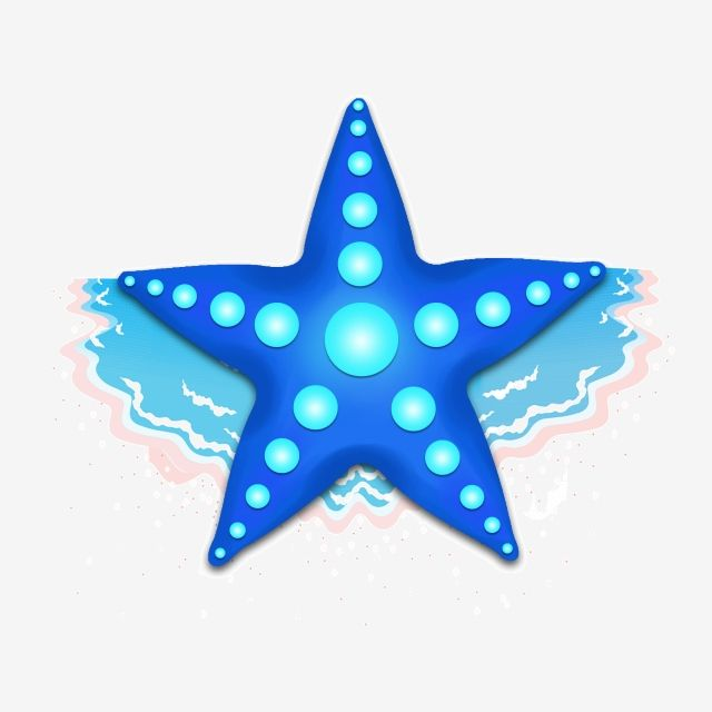 Estrela Do Mar Azul Dos Desenhos Animados Estrela Do Mar Desenhada De Mao Ilustracao De Estrela Do Mar Dos Desenhos Animados Linda Estrela Do Mar Arquivo Png E Psd Para Download Gratuito