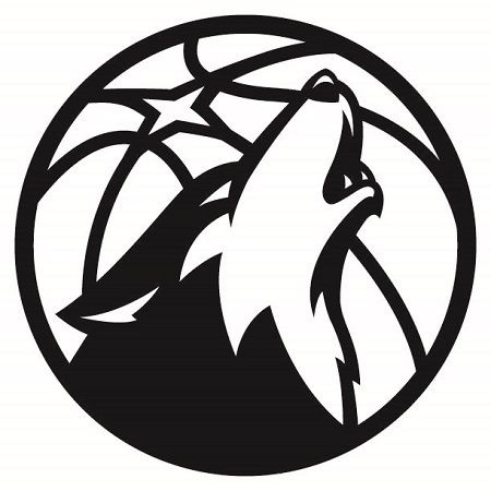 Mtimberwolves Partial 2017