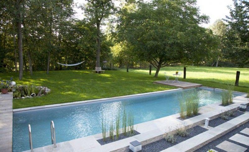 20 Luxurious Backyard Infinity Pool Designs | Large backyard ...