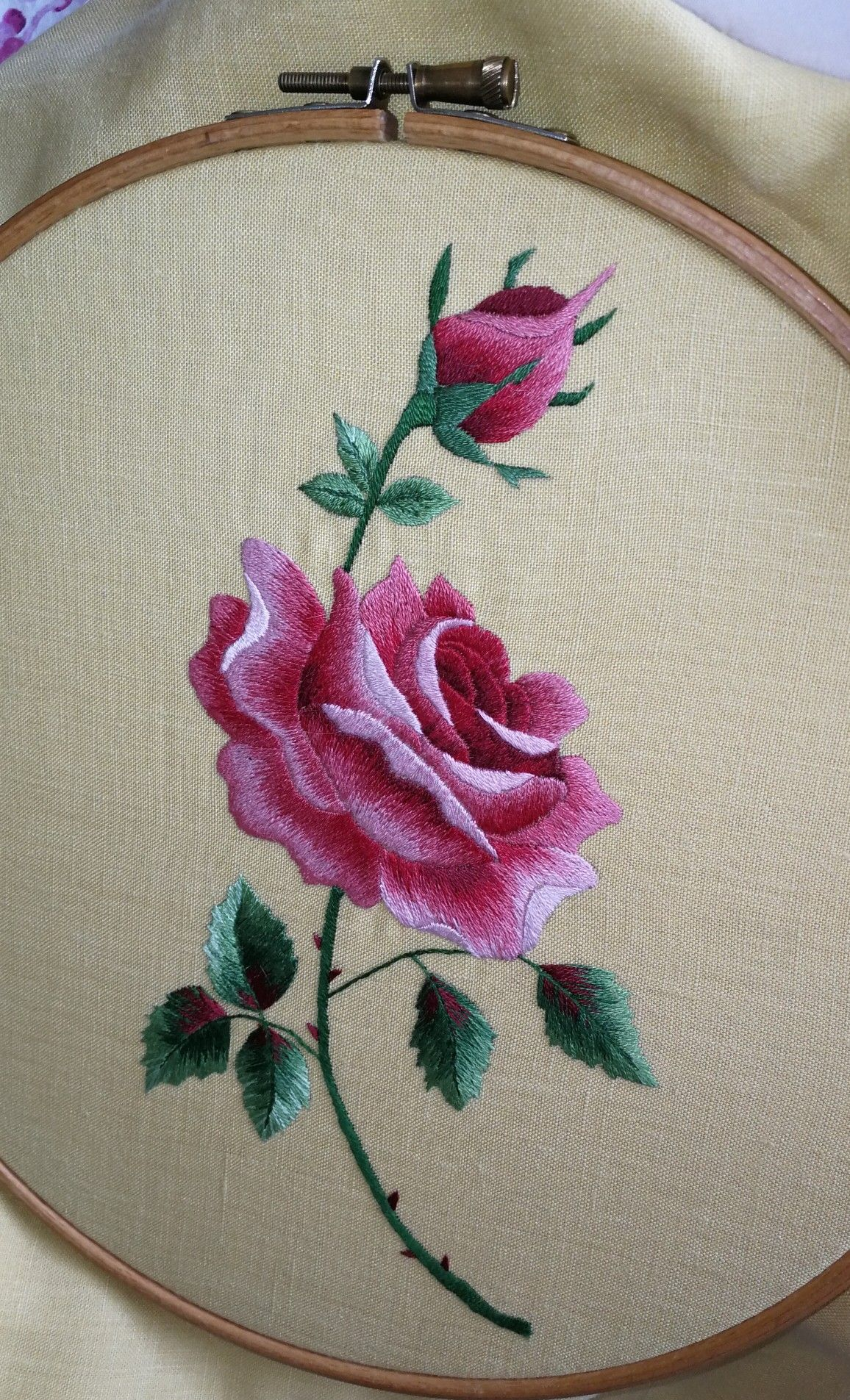 My Rose Project Crewel Embroidery Kits Brazilian Embroidery Brazilian Embroidery Stitches