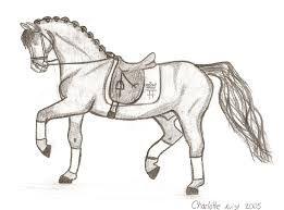 tegninger af heste