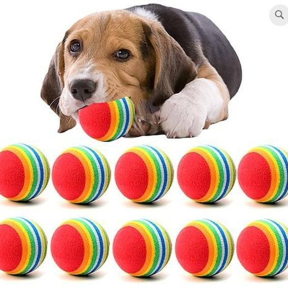 Https Buff Ly 2plkuyd Check Out My On Pet Store Yourpamperedpetz Com Paws Pets Cat Dog Https Buff Ly 2plkuyd Che Small Dog Toys Dog Toy Ball Pet Toys