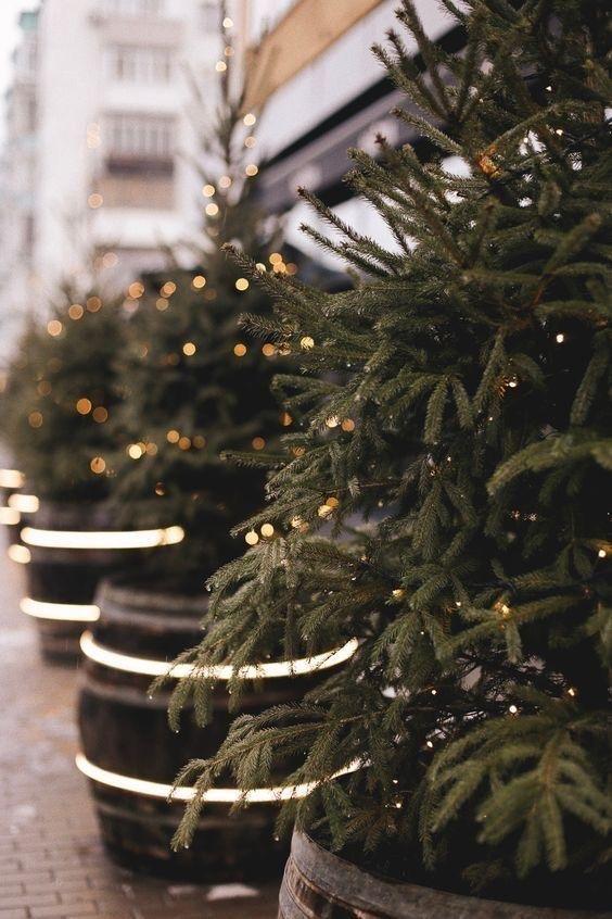 Albero Di Natale Pagano.Pin Di Sara Pagano Cappuccino In Th Su Winter Inspiration Con Immagini Sfondo Natalizio Buon Natale Sfondi