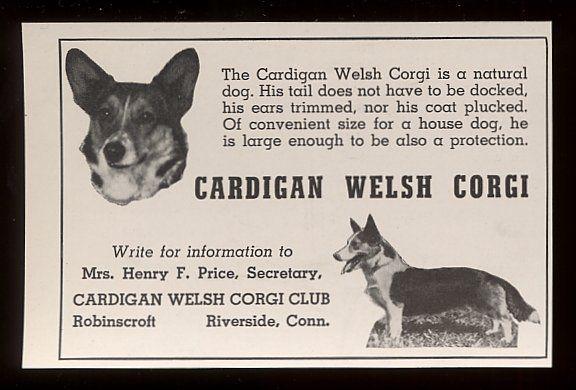 Corgi 1940 Ebay Com Welsh Corgi Cardigan Welsh Corgi Corgi