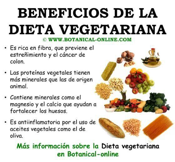 F7cdf07ff1f406d158f111481ab2a51c Jpg 560 519 Alimentos Dieta Vegetariana Comida