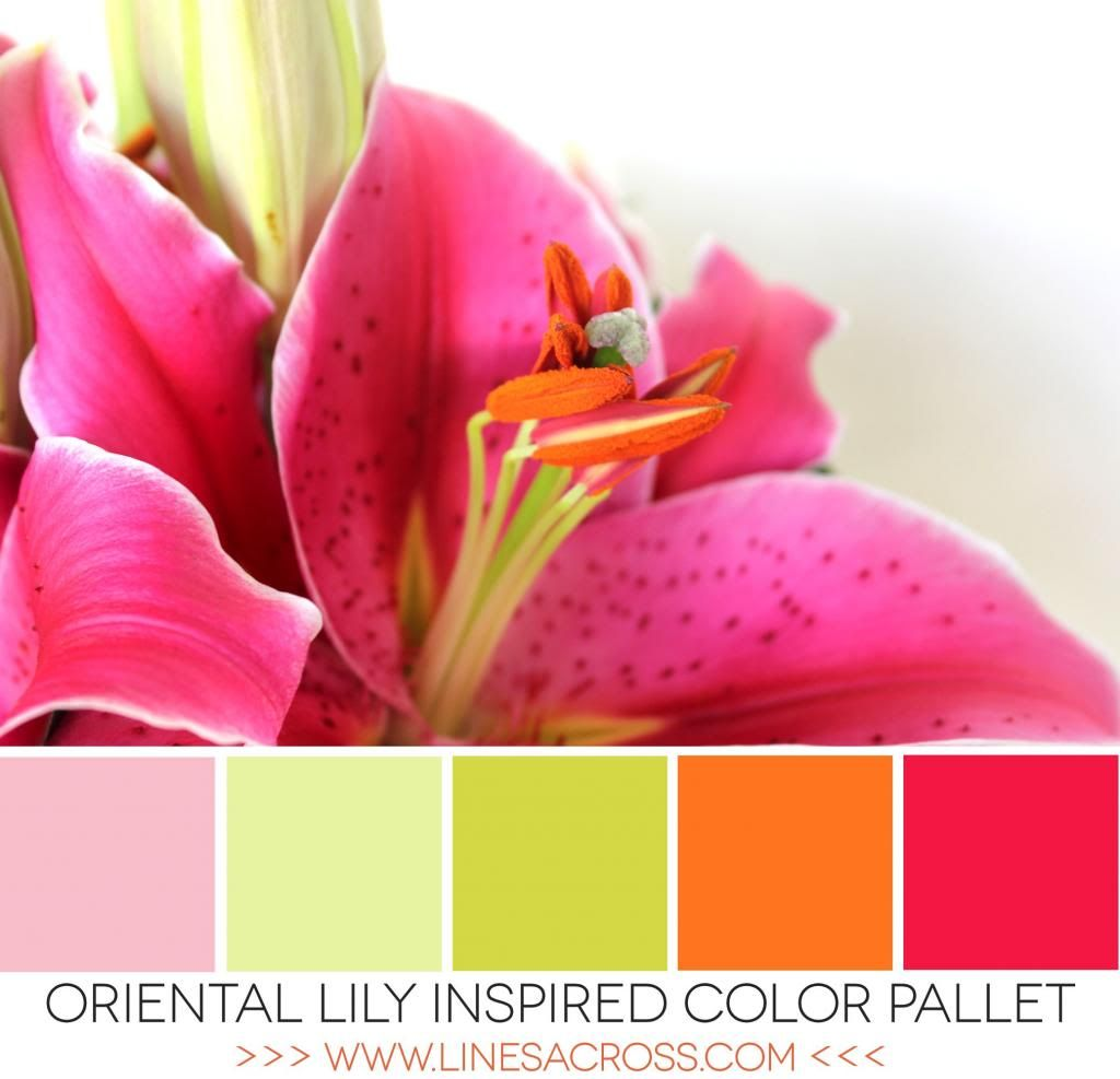 Oriental Lily Tropical Color Pallet | Colour Love | Pinterest ...
