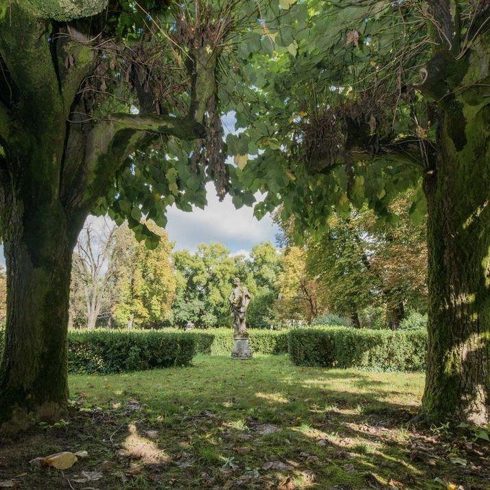 #secret #garden #secretgarden #flowers #nature #tree #trees #leaves #beautifulflowers #beautifulplaces #beautiful #pretty #aesthetic #plants #places #wanderlust #art #gardening #outdoor #photography #travel #escape