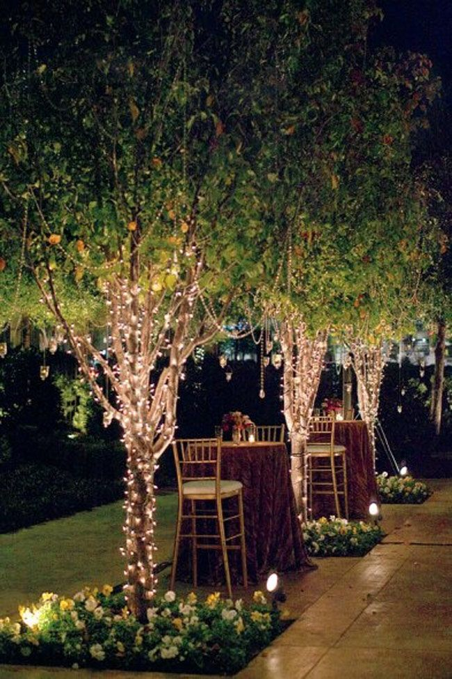 diy outdoor wedding lighting ideas%0A cocktails in the backyard with lit trees  fairy lights  nighttime  romantic  setting  outdoor space
