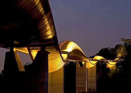 The Henderson's Waves Bridge | Flickr - Photo Sharing!
