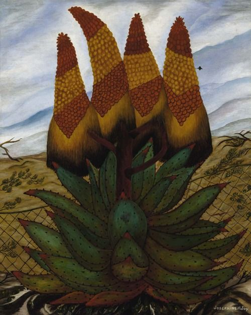 Josephine Joy:  Aloes (1935-1938) via the Smithsonian American Art Museum