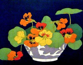 Nasturtium drawing Etsy Flowers Pinterest Creativity