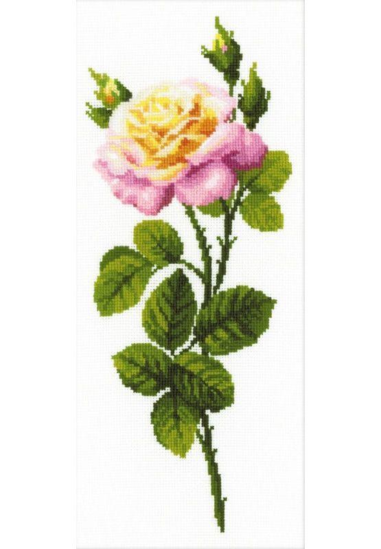Wonderful Rose Cross Stitch Kit £22.50 | Past Impressions | Riolis