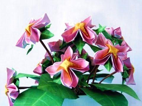 Advanced looking origami flower youtube origami flowers advanced looking origami flower youtube mightylinksfo