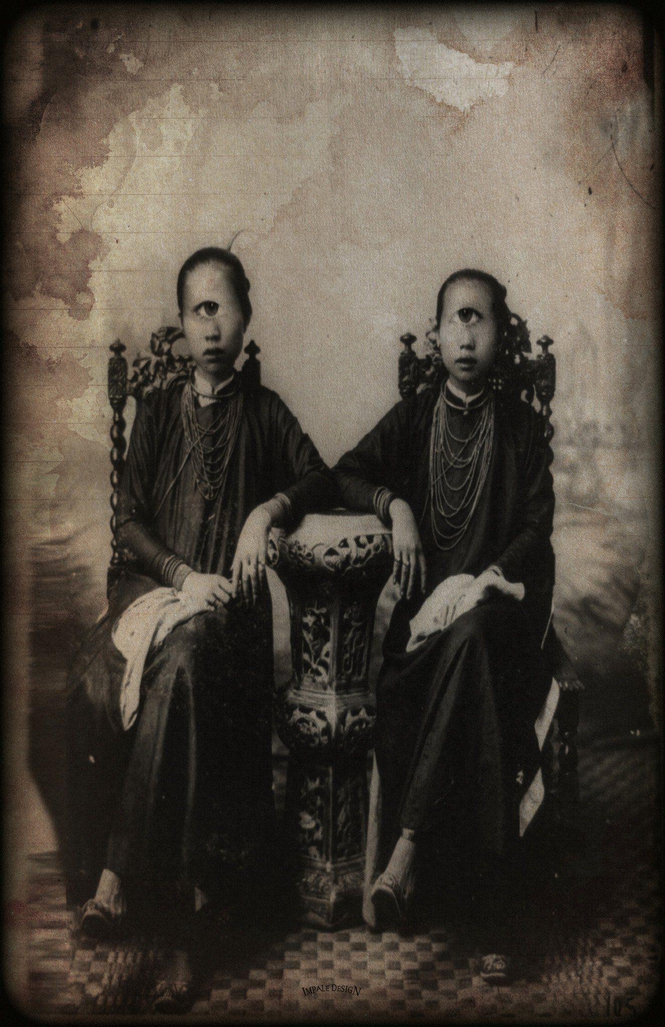 Cycloptic Siamese Thirteenth Floor Human Oddities Retro Photo History