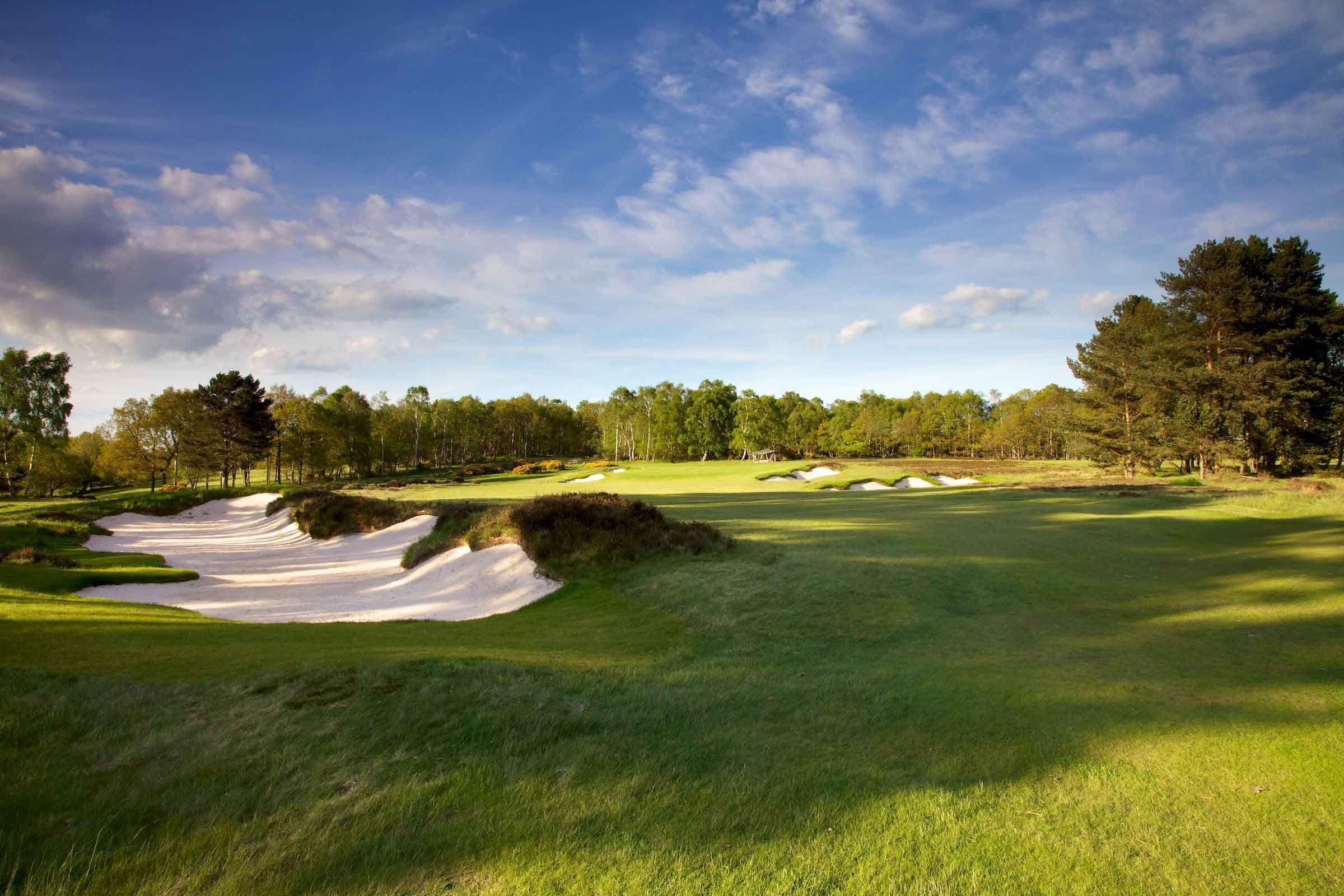 Alwoodley golf club google search golf putters golf