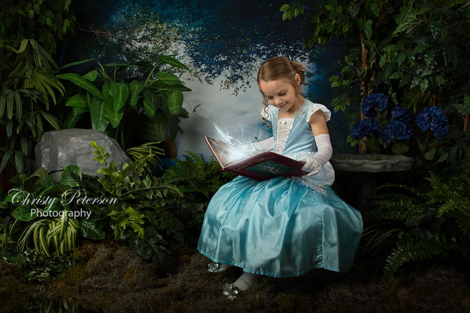 Fairy Tale Photography Digital Backdrops | cinderella ...