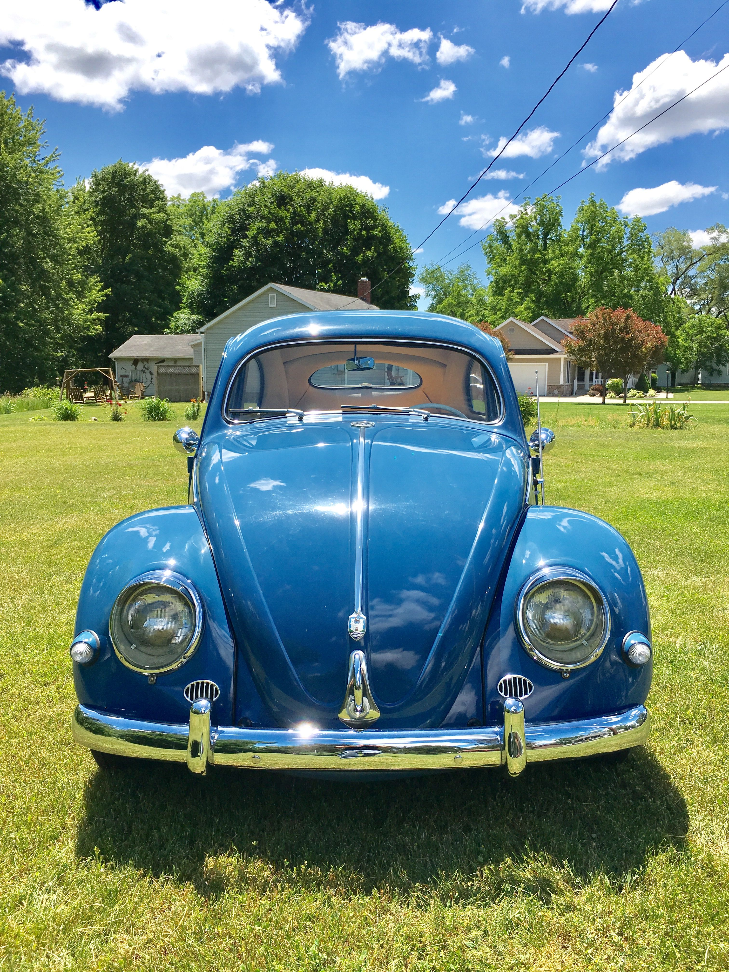 Pin by Harry Roy on For sale 1956 VW Beetle Oval window