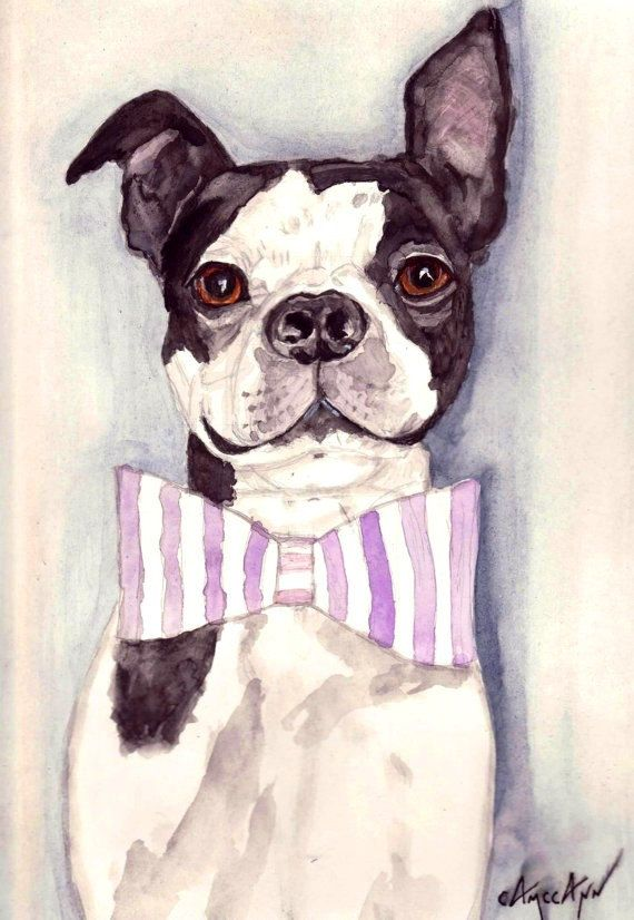"""Boston Terrier Wearing a Bowtie Print of Original Watercolor Painting in 3 Sizes: ACEO, 5"""" x 7"""" and 8"""" x 10"""""""
