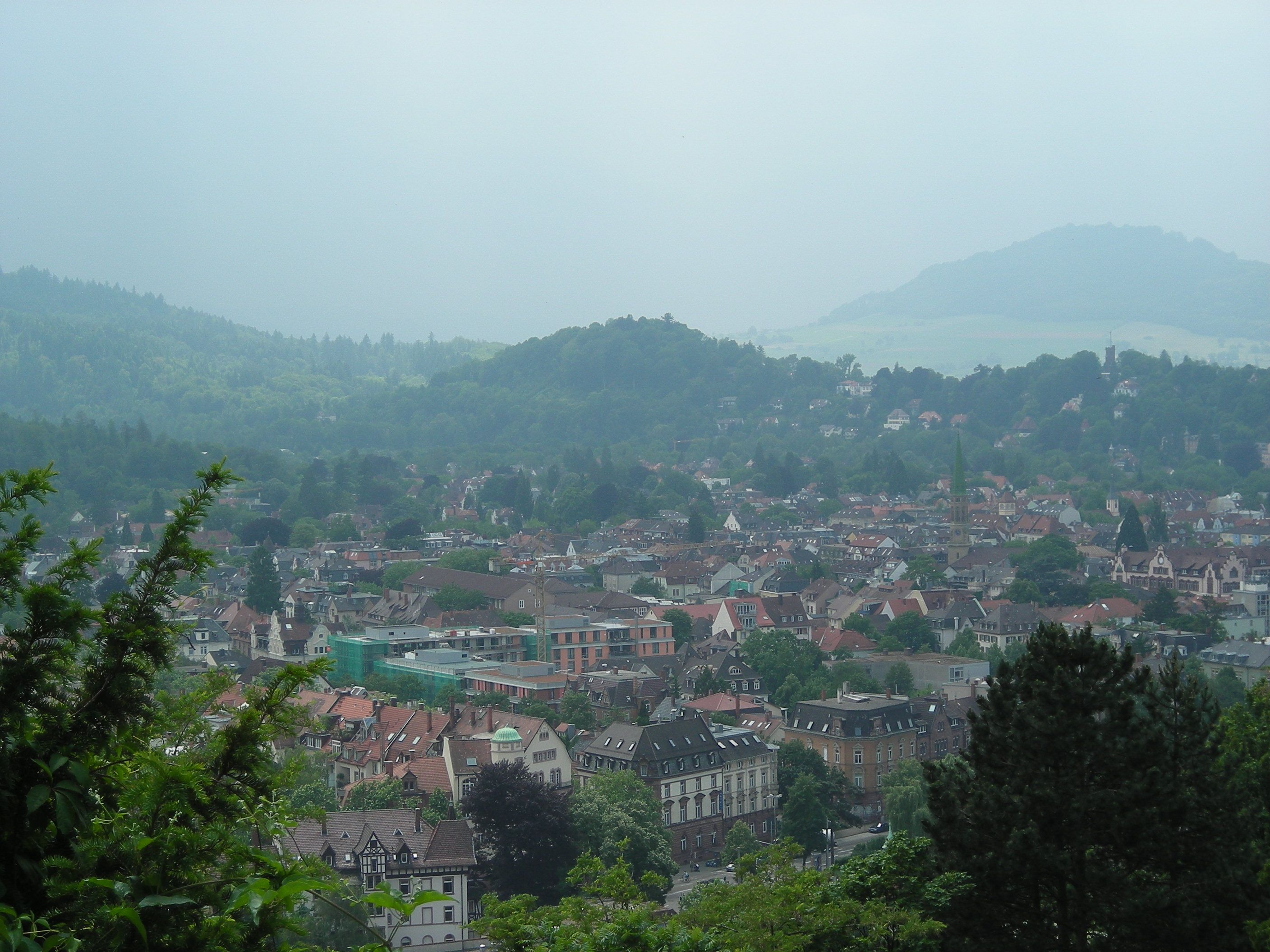 Hiking the Black Forest in Freiburg, Germany.