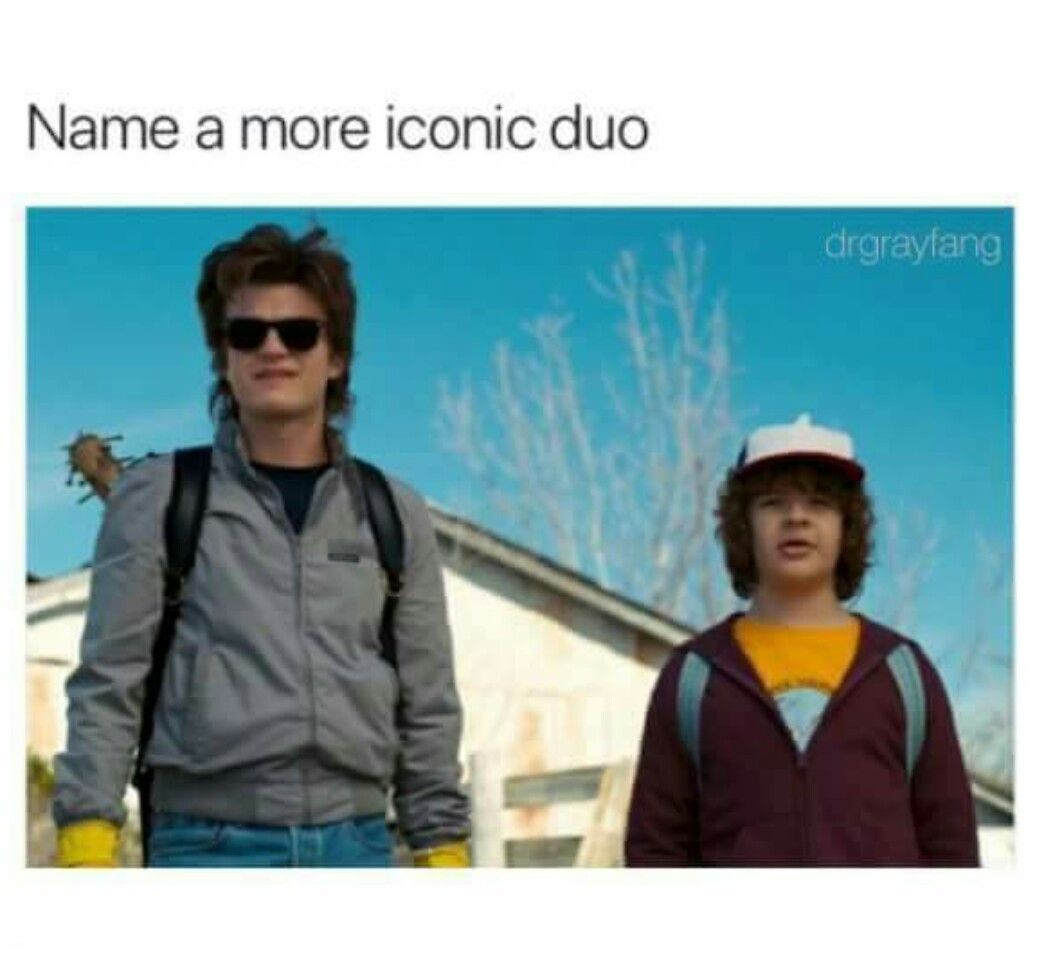 Steve and Dustin. Stranger Things. Name a more iconic duo