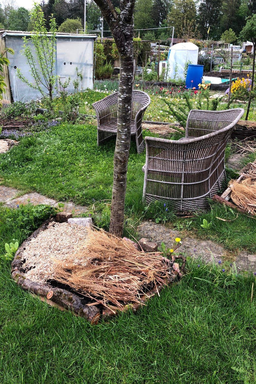Ein Gartenbeet Ohne Umgraben Anlegen Anleitung Und Tipps Gartenbeet Garten Biogarten