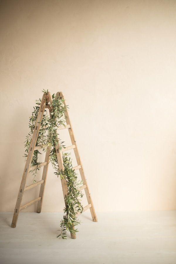 event design - olive branches, ladder