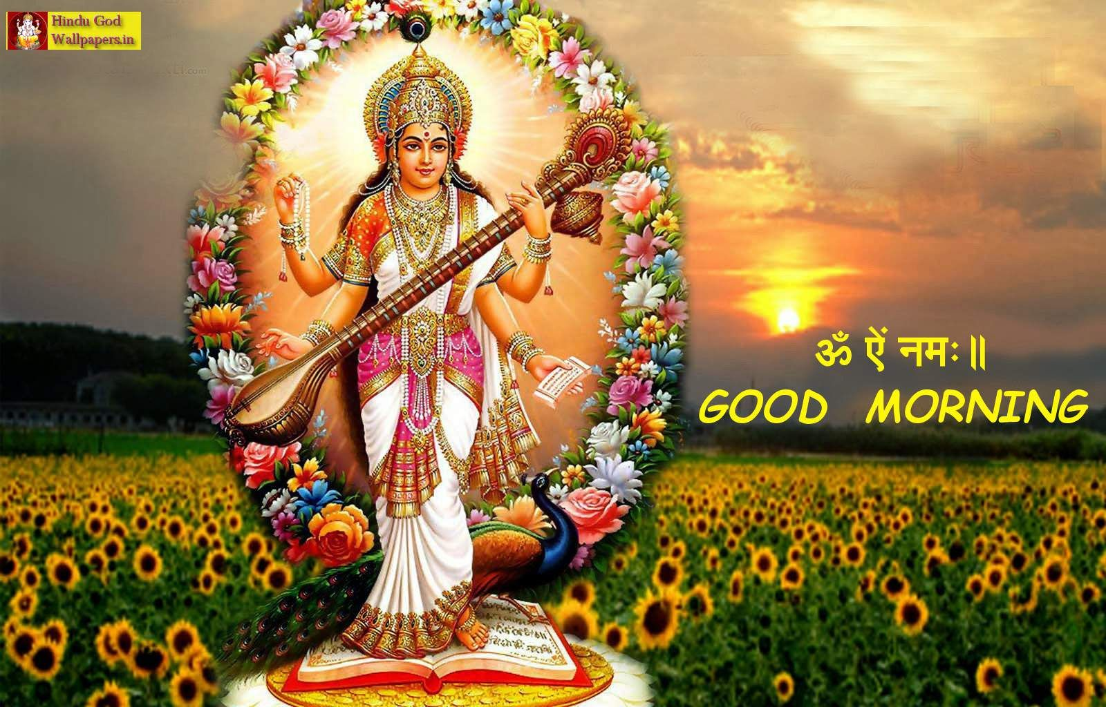 Free Best Collection Of God Good Morning Pic Free Download High