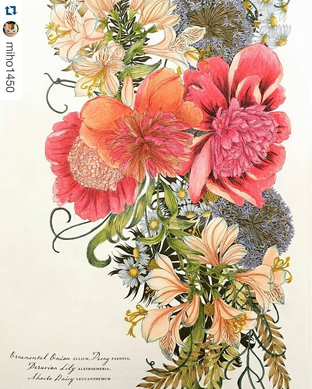 Pin by Ruth O\'Hara on Floribunda | Pinterest | Coloring books, Adult ...