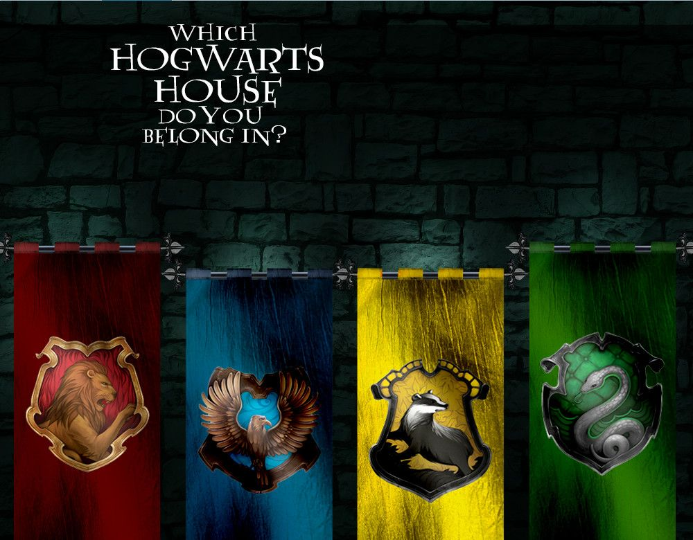 Which Hogwarts House Do You Belong In In 2018 Harry Potter