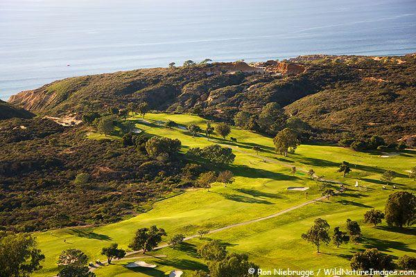 Torrey Pines Golf Course Photos Golf Courses San Diego Golf San Diego Travel