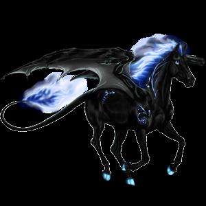 Equinox Pegasus Akhal Teke Bay 3648136 Howrse Us Fairytales