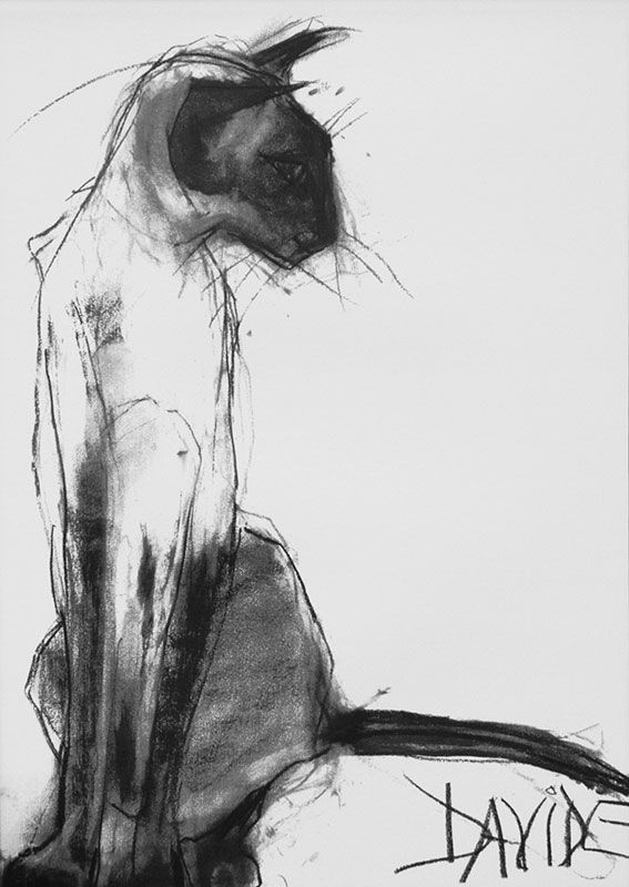 Task 2. CHARCOAL DRAWING. RESEARCH. (VAC3) MICHELLE TRUSCOTT. 2) Charcoal drawing by Valerie Davide.
