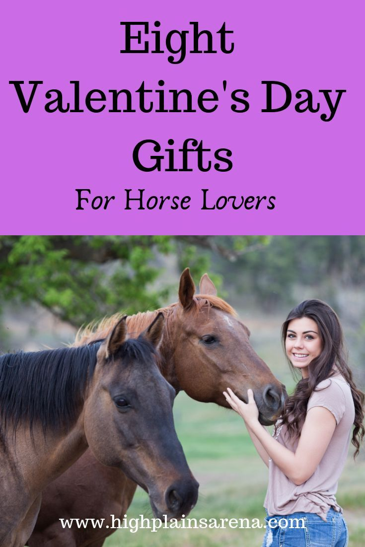Eight valentines day gift ideas for horse lovers and