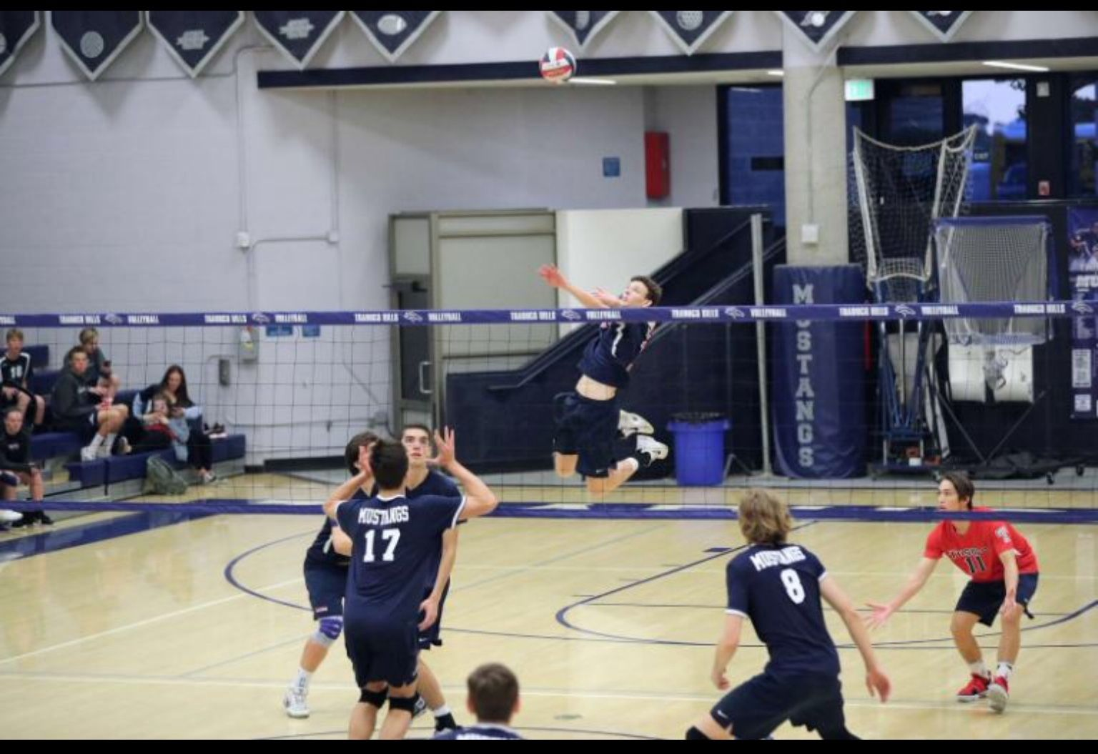 Pin On Great Sport Of Volleyball