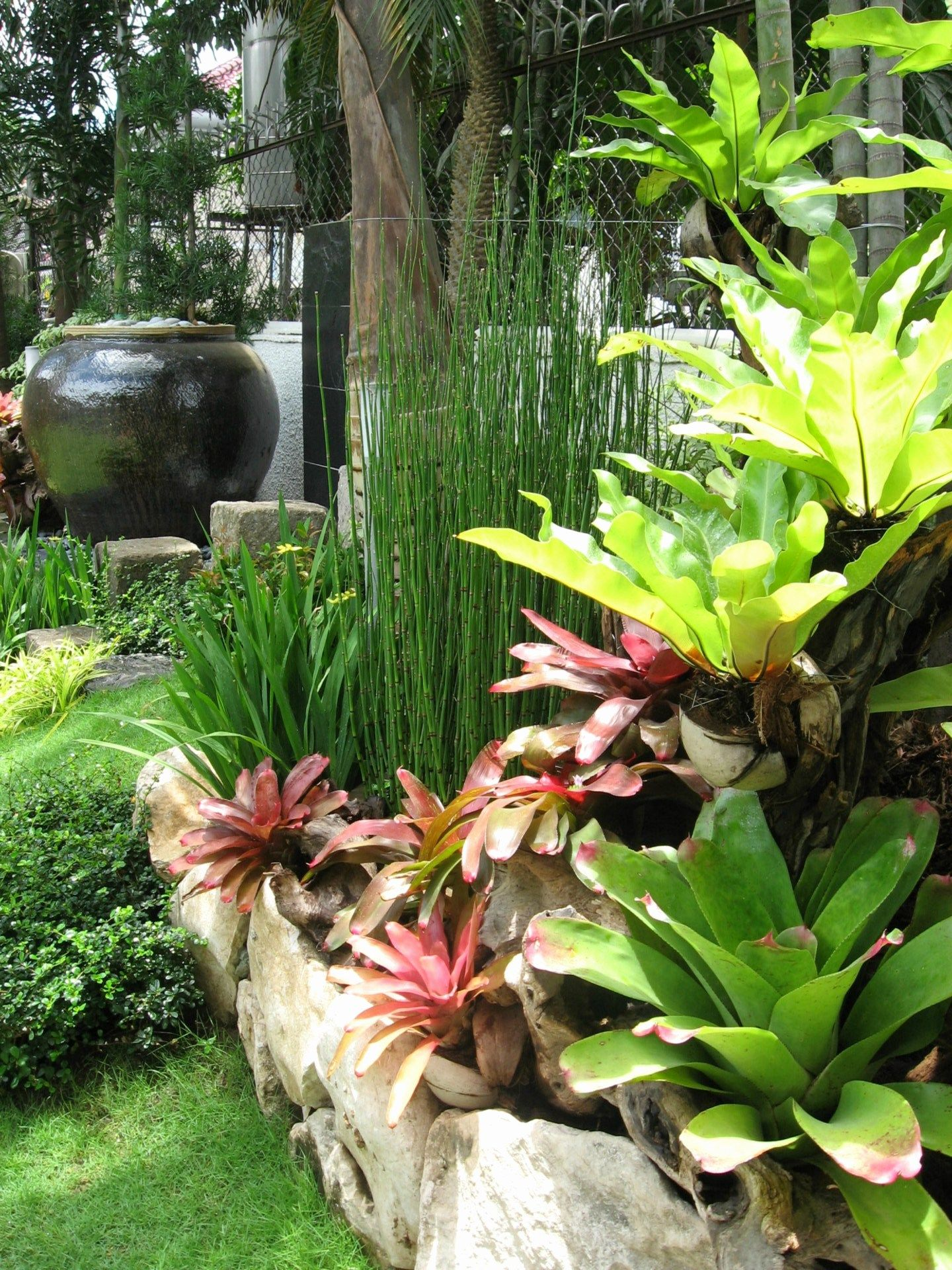 Garden Landscape Design Philippines Lovely Landscaping ... on Tropical Landscaping Ideas For Small Yards id=92880