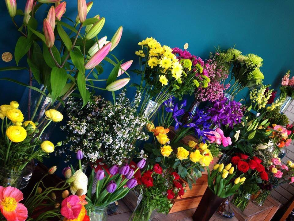 - Knight Blooms Floral Designs