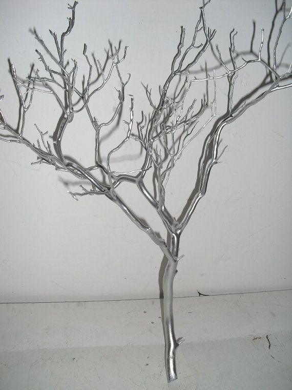 12 20 Silver Manzanita Branches Free Shipping By Curatorgeorge