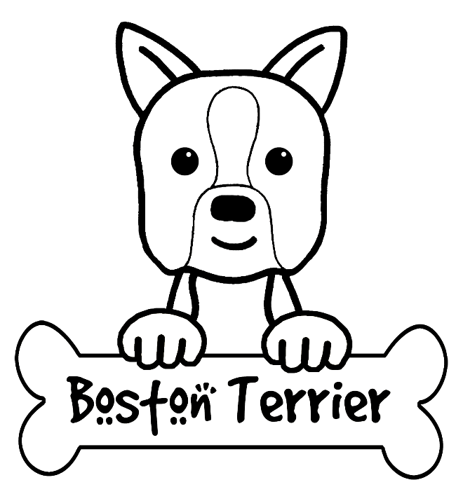 Boston Terriers Are Happy And Friendly Elegant In Black And White Description From M5x Eu Dog Coloring Page Valentines Day Coloring Page Super Coloring Pages