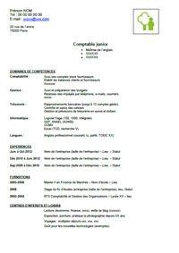 cv comptable gratuit CV de comptable gratuit. (200×283) | coeur | Pinterest  cv comptable gratuit