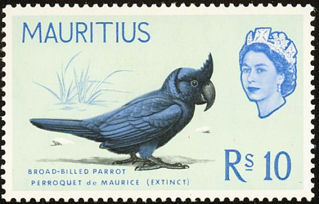Broad-billed Parrot stamps - mainly images - gallery format
