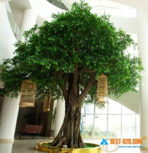 Charmant Unbelievable Indoor Tree Tr