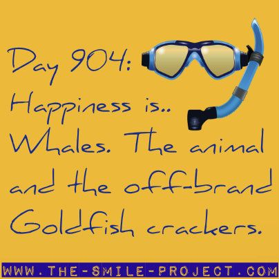 The Smile Project <3 Whales