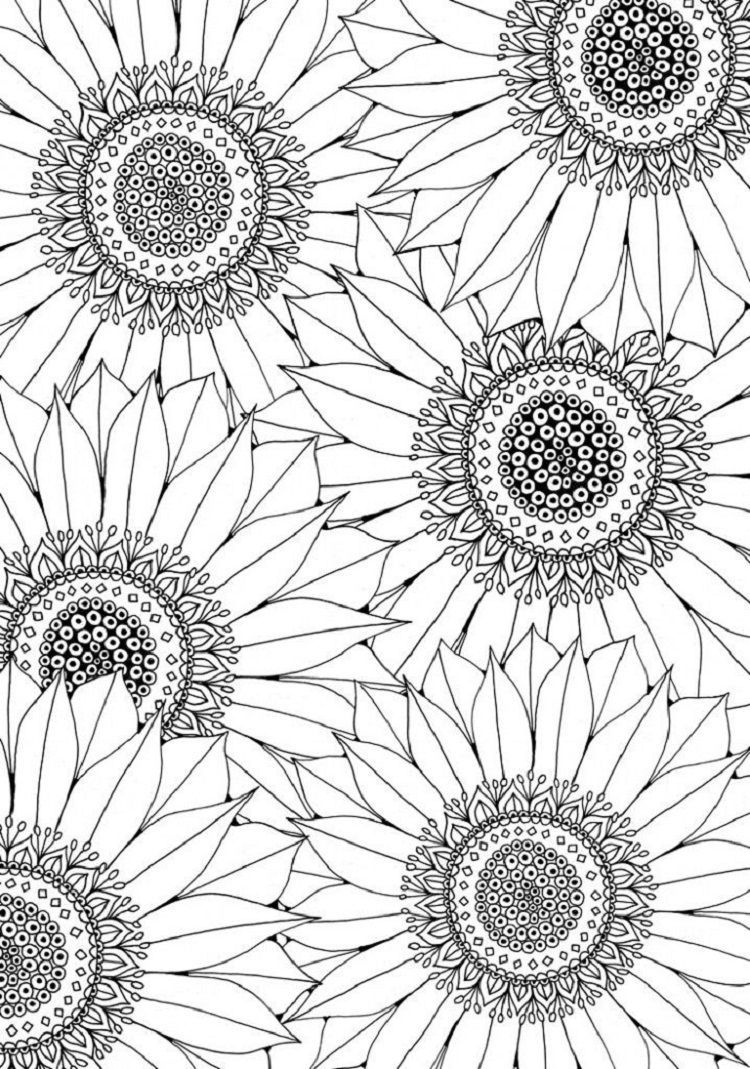 Free Sunflower Coloring Pages Check more at http://coloringareas.com ...