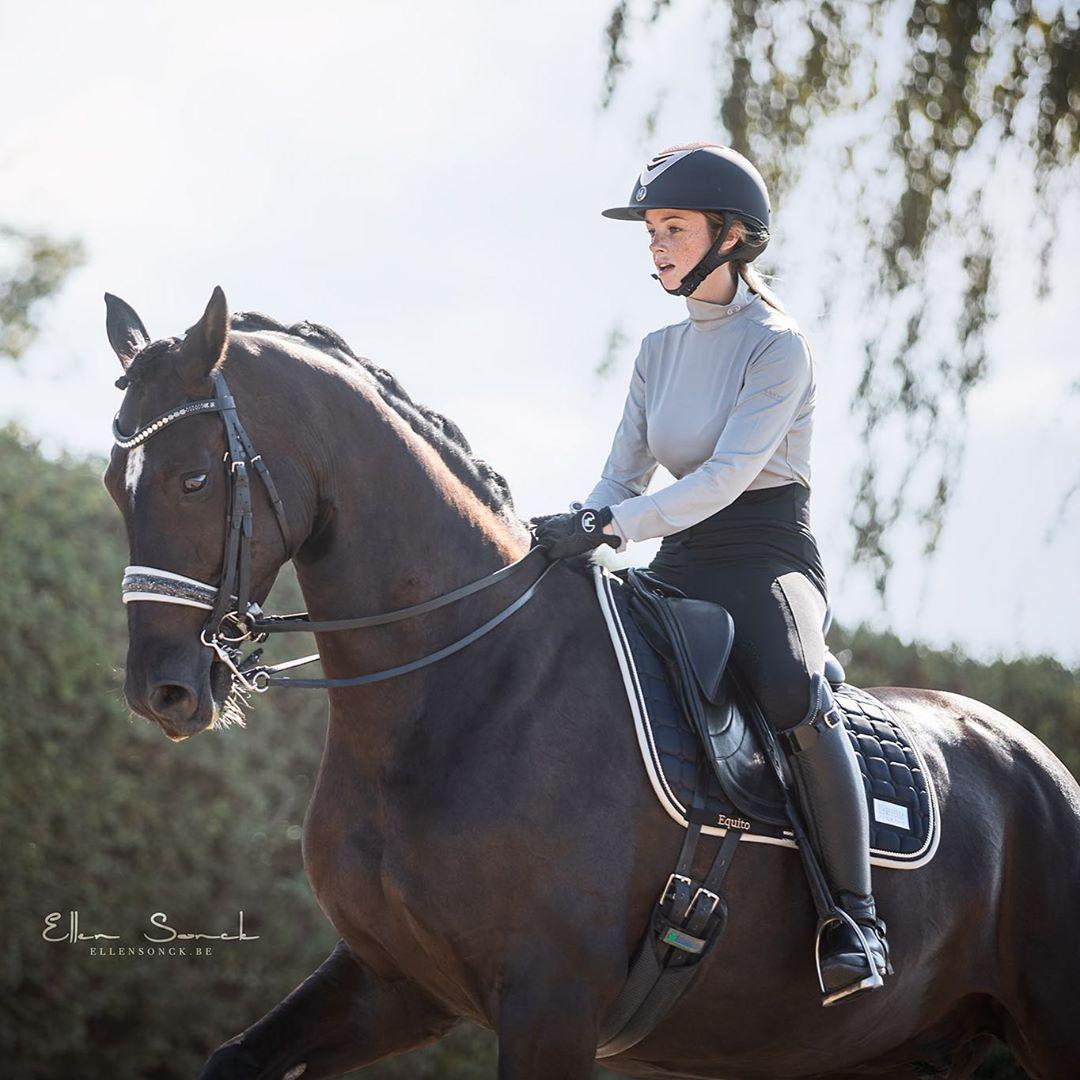 Big D Equine Products