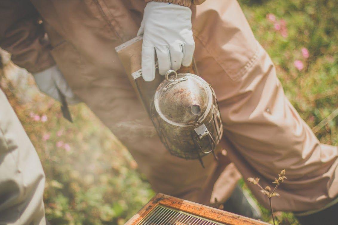 Smoker Beekeeping Gear Essentials