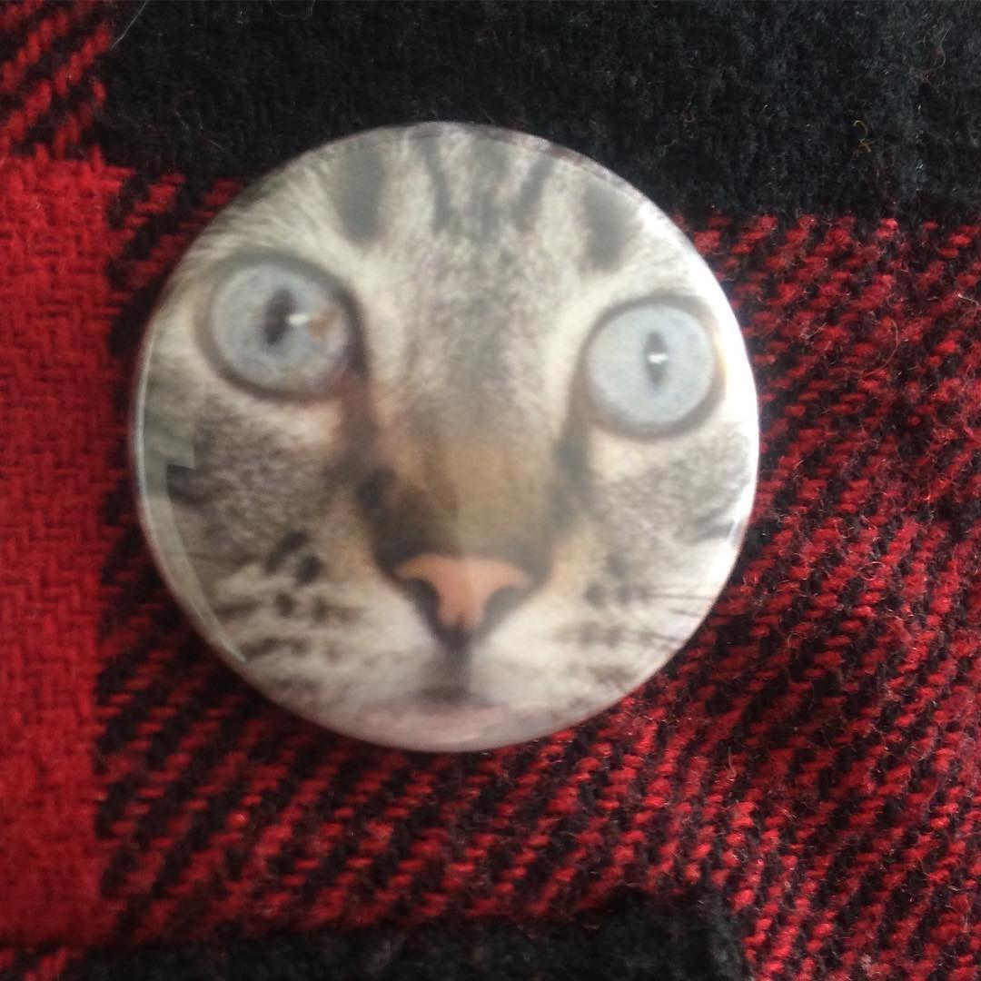 Vous allez enfin pouvoir contempler mon fils droit dans les yeux sur ma veste.... #frimousse #badge #badge32mm #instacat #lolcat #catsofinstagram #chat #siamois #behindblueeyes #regard#eyes #pins #oï #moustache #miaou #minou #epingle #veste #badges #badgeswag by tristanbernardo