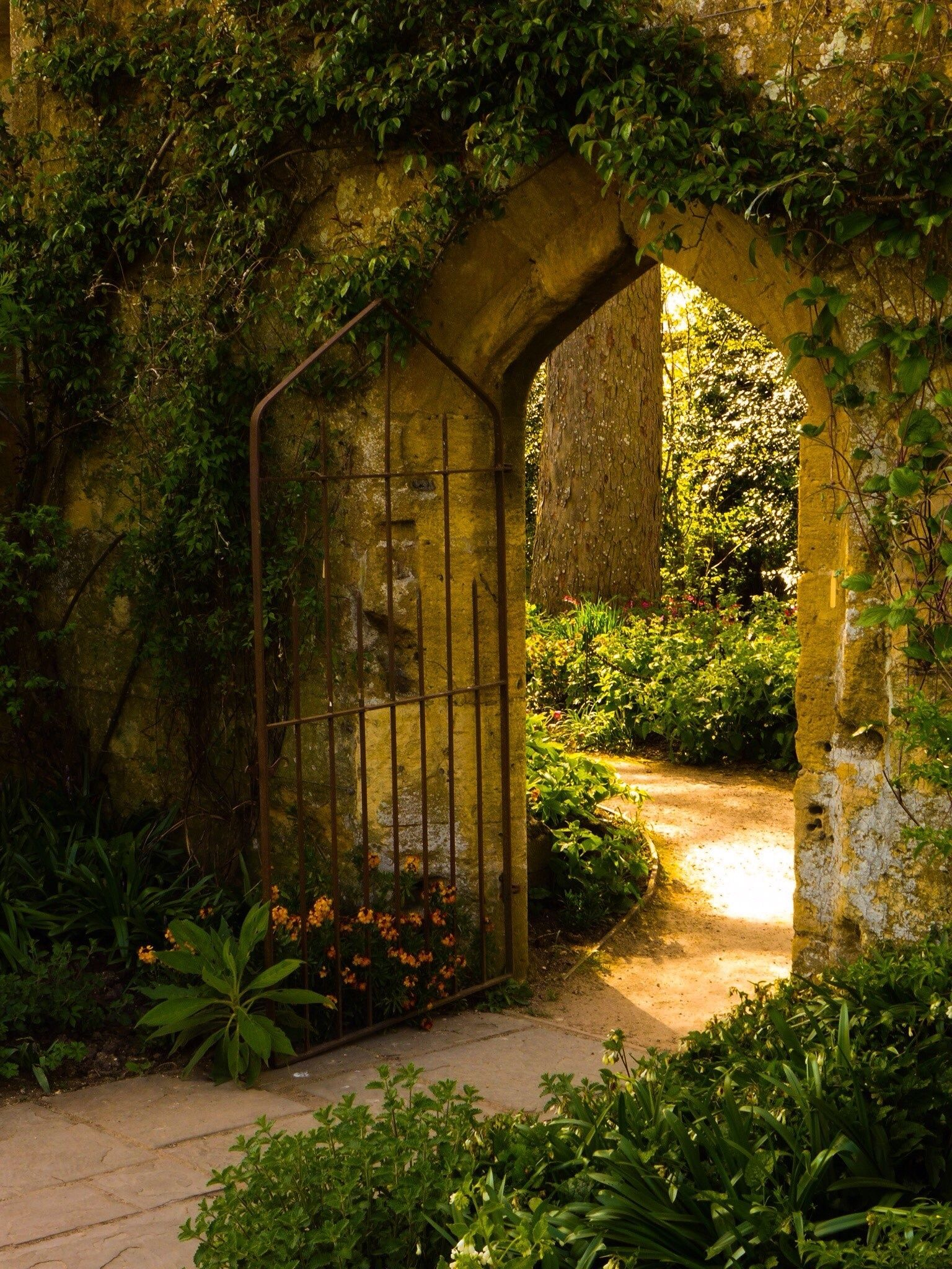 Secret Garden: The Secret Garden - By Stephen Warner
