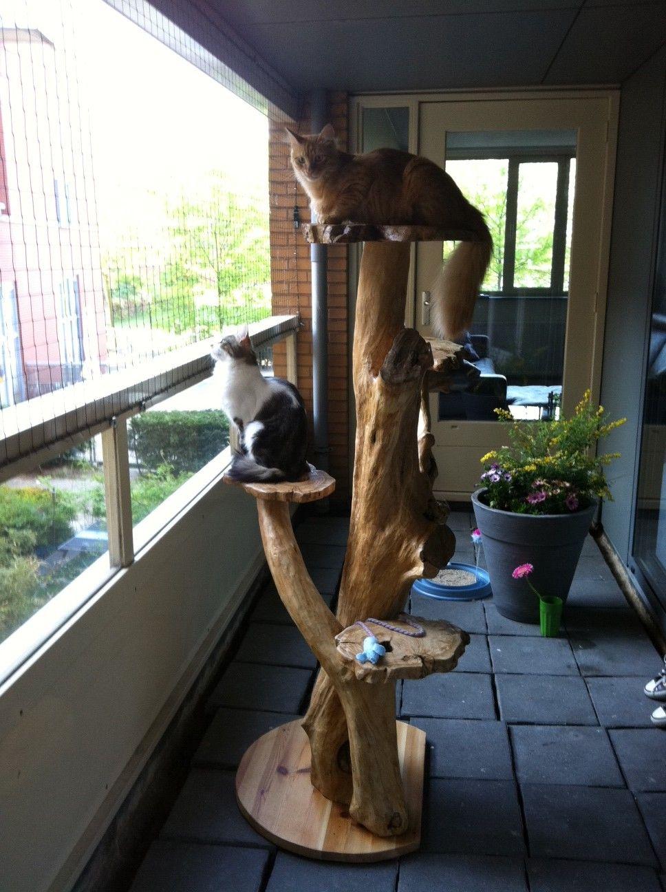 free cat tree plans cat towers cat tree cat tree plans cats. Black Bedroom Furniture Sets. Home Design Ideas